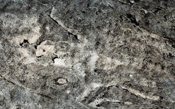 Feuille de pierre 100% naturelle translucide Londres de face