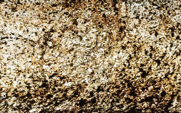 Feuille de pierre 100% naturelle translucide Paris de face